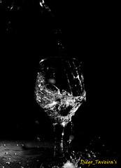 07.12.2016 (8) (Diego..Taveira) Tags: fotografia ribeirão preto diegotaveira taças momentos