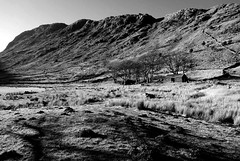 Nr Thirlmere (plot19) Tags: landscape lakedistrict light love lake lakes british britain blackandwhite blackwhite black england mountains hills hill walk north northwest northern cumbria trees plot19 photography sony rx100