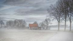 Groundfog in Abbekinderen (Bram de Jong) Tags: landscape zeeland trees house mist fog groundfog sky road nikon outdoor zuidbeveland