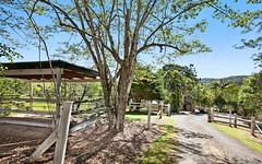 5 King Parrot La, Ridgewood QLD