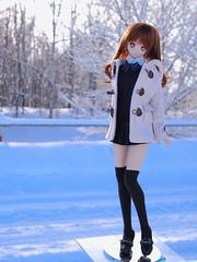 PC307238 (ranbutan) Tags: dd doll dollfiedream ddh06