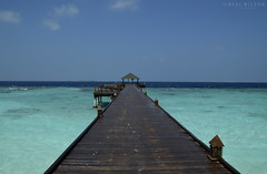The Maldives (Neal J.Wilson) Tags: meedhupparu paradise indianocean sea pier jetty turquoise holidays vaccation blue perspective asia maldives raa travel tropical