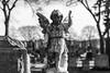 Cherub (Alejandro Ortiz III) Tags: 6d alejandroortiziii alex alexortiz allrightsreserved brooklyn canon canoneos cemetery copyright2016 copyright©2016alejandroortiziii digital ef24105mmf4lisusm eos lightroom lightroom3 lindenhillcemetery newjersey newyork newyorkcity rahway ridgewood shbnggrth statues alexortizphotogmailcom