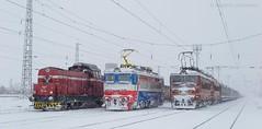 Winter brothers (Radler.z) Tags: 44073 43531 43514 55118 bdz cargo tbd locomotive skoda 68e electric влак локомотив гара волуяк тбд тец бобов дол товарен