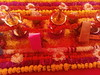 IMG_20161211_135203 (bhagwathi hariharan) Tags: rangoli kolam nallasopara nalasopara rose pooja christmas 2016 festivals mumbai goregaon prithvilandproject 2017 celebrations lordshani lordayyappa