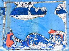 Killer Whale (violetchicken977) Tags: texturaltuesday htt peelingpaint abstract