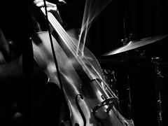 vibrazioni (serie) (fotomie2009) Tags: trio jasban alberto ghigliotto music live concert violoncello musica concerto raindogs house savona bn bw monocromo monochrome instrument musical sightandsound