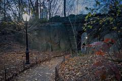 City Fortress (Jeffrey Friedkin) Tags: jeffreyfriedkinphotography arch autumnleaves buildings bridge cityscene centralpark leaves manhattan newyork nyc newyorkscene newyorkphoto outdoors trees w