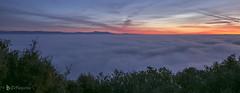 2016-12-27-escapada-058 (Masjota65 (J.Miguel) +400.000 vistas, gracias) Tags: niebla brouillard fog nebel 霧 ضباب alba aube dawn morgendämmerung فجر 黎明 夜明け