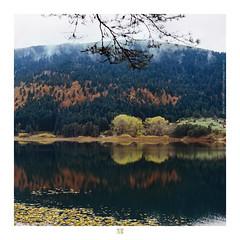 ETR PHOTOGRAPHY  ERSİN TÜRK - ETR0052 (ETR | Ersin Türk) Tags: abant bolu turkey ersintürk etrfotograf ersintürkfotoğraf etr landscape manzara ekim 2016 fog forest tree sonbahar fall