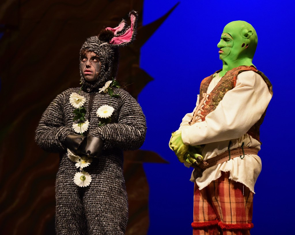 The World's Best Photos of funny and shrek - Flickr Hive Mind - photo#38