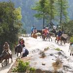 Aufstieg zum Kloster Taktsang, Bhutan