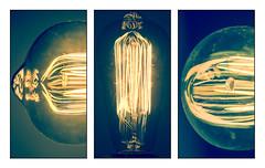 Bulb (Gigin - NoDigital) Tags: light macro nature bulb fire photo objects phototechniquesstyles techniquesstyles