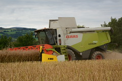Claas Lexion 750 Combine Harvester cutting Oil Seed Rape (Shane Casey CK25) Tags: county ireland horse irish green field work pull golden hp corn nikon power cut earth farm cork farming grain working cereal harvest knife machine seed straw ground rape machinery soil crop combine cutting oil crops farmer blade agriculture dust cereals pulling contractor chaff collect blades harvester collecting horsepower 750 claas agri maaidorser mähdrescher lexion conna tillage kombajn cosechadora mietitrebbia moissonneusebatteuse d7100 kombajny zbożowe wosr corn2015 harvest2015 harvest15 grain2015 grain15