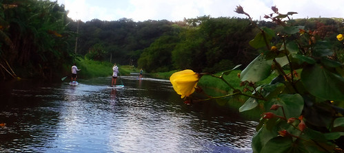 2015 Kauai Paddle Adventure  (103)