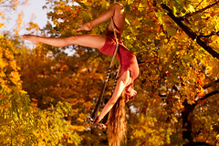 Judith Erlen (laurin.gutwin) Tags: park autumn light red portrait orange oktober color tree berlin rot fall yellow forest germany deutschland gold one leaf outdoor herbst natur gelb acrobatics flashlight shooting blitz blatt sonne wald cirque speedlight baum treptow circe ein octobre herbstlaub akrobatik zirkus herbststimmung herbstfarben trapez luftakrobatik luftartistik