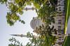 Konya - Haci Veys Zade Mosque From Cultural Park Sultanşah Caddesi 4 (Le Monde1) Tags: park turkey nikon islam mosque sultan turkish dervish anatolia moslem whirlingdervishes culturalpark kültür sinanpasha d7000 lemonde1 hasanpasha haciveyszade sultanşahcaddesi fatmahâtun