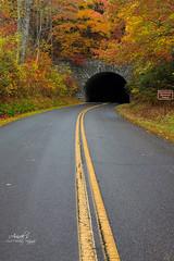 Into the tunnel (Avisek Choudhury) Tags: autumn fallcolor northcarolina gitzo blueridgeparkway greatsmokymountain canon5dmarkiii avisekchoudhury acratechballhead canon2470mmf28lii avisekchoudhuryphotography
