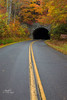 Into the tunnel (Avisek Choudhury) Tags: autumn fallcolor northcarolina gitzo blueridgeparkway greatsmokymountain canon5dmarkiii avisekchoudhury acratechballhead canon2470mmf28lii avisekchoudhuryphotography