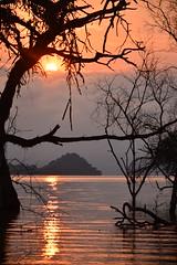 Island at Sunrise (Leela Channer) Tags: morning pink trees orange sun lake water silhouette yellow clouds sunrise island dawn colours purple flood kenya baringo lakebaringo