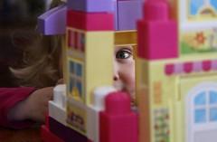 An eye for design (stephencharlesjames) Tags: child children play building blocks toys girl toddler childlike innocence blue eye