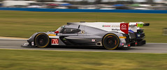 NC5_2849 (royjet3) Tags: rolex24 auto car racing nikon prototype panning sports daytona passing overtaking imsa castrol edge