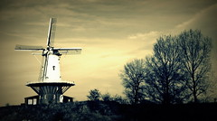 Emotions (José MF Azevedo) Tags: veere bj youth te juventude paulo sorrentino emotions emoções holanda dutchland moinho windmill