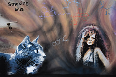 Cat and Janis (HBA_JIJO) Tags: streetart urban graffiti pochoir stencil animal art france painting chat peinture cat pantin portrait music celebrity paris93 spray pochoiriste star musique idol docteurbergman bergman janisjoplin