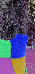 Arbre en petite laine (camilleromane1) Tags: whool parc square arbre tree laine couleur color sonyalpha68 sony knutange