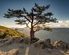 Love (y0chang) Tags: k3 pentax yunghanchang blueridge blueridgeparkway ravensroost mountain tree sunset overlook virginia loveva