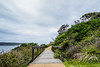 DSC02078 (Damir Govorcin Photography) Tags: natural light trees landscape sky clouds zeiss 1635mm sony a7ii boardwalk path water watsons bay sydney harbour perspective creative