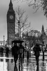 Wet Westminster (JB_1984) Tags: tourists man woman people rain weather umbrella reflection parliamentsquare palaceofwestminster housesofparliament queenelizabethtower clocktower bigben blackandwhite bw mono westminster cityofwestminster london england uk unitedkingdom