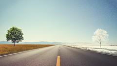 #Seasons #Landscape #Road #Wallpaper (CanWallpaper) Tags: seasons landscape road wallpaper