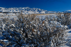Boise Foothills in Winter (Talo66) Tags: idaho boise boisefoothills boisefront landscapes nature views scenics mountains sagebrush snow winter