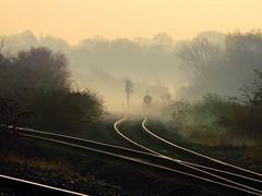 Early Morning Mist @ South Ruislip (crashcalloway) Tags: morning sunny misty commuting tracks sunrise southruislip chilternrailways railways