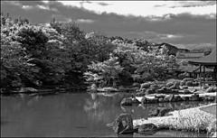 """Tenryu-ji Temple"" - Kyoto, Japan (TravelsWithDan) Tags: bw blackandwhite temple tenryuji kyoto japan canon5d city urban lake foliage"