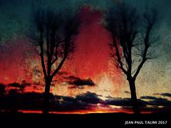 Ciel d'hiver (JEAN PAUL TALIMI) Tags: solitude sens talimi campagne deux bourgogne arbre seul silouettes campagnebourguignonne coucherdesoleil ciels calme chemins nature nuages jardin arbres