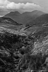 The Moelwyns from above Maenofferen (Michael Sowerby Photography) Tags: 2015 northwales snowdonia moelwyn bach mawr mountains peaks blackandwhite bleak moody clouds wet quarry adit water wales weather dramatic cloudy canon 5dmarkiii 2470mm