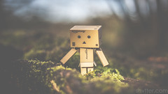 Country Walk (#Weybridge Photographer) Tags: adobe lightroom canon eos dslr slr mk ii mkii danbo danboard kiyohiko azuma manga cardboard box amazon robot character figure country countryside walk walking stroll strolling