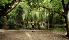 bosque encantado (MaRuXa fotografía) Tags: verde canon galicia castillo maruxa aldan bosqueencantado