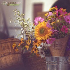 Market Flowers (A Darling Shot (crazy busy)) Tags: summer flower moody market sunflower bouquet farmer hdr matte warkworth campbellford glenleafarm
