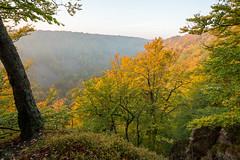 Sdersen (Casper_Nielsen) Tags: sunset mist mountain fall nature colors canon nationalpark skne sweden outdoor visit calm 5d leden tge mark3 swe sdersen