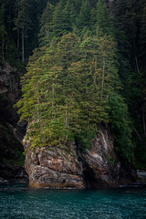 Untitled (James*J) Tags: ocean sea cliff plant tree water alaska forest landscape waterfall pacific northwest outdoor ak pnw