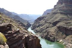 Grand Canyon 2015 750