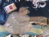Fishing - Caught in the act (Kingshuk Mondal) Tags: india fish dead fishing ray market stingray endangered trade kingshuk sundarban sundarbannationalpark kingshukmondal