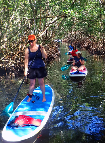 11_29_15 Private Paddle Tour Lido Key FL 08