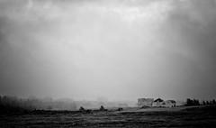 Brier Island Fog (craig_schenk) Tags: drama fog dramatic clouds landscape bw pics outdoor canada nova scotia black white brierisland novascotia town house village moody mood magic nikon d300 nikond300