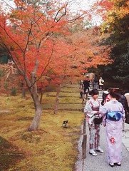 和服姑娘 Kimono Girls (蓋Gai) Tags: autumn people japan kyoto 京都 mapleleaf 日本 kimono 紅葉 秋 visitors 楓葉 kodaiji 高台寺 和服 行人 enlight 觀光客 紅葉狩り