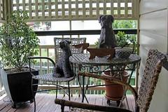 A Corner of my Home (blackcatcraft) Tags: dogs verandah home