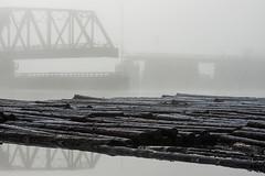 Boom... Nailed It! (Prestidigitizer) Tags: fraserriver frost fog mist bridge logboom logs winter cold pentaxda50135mm trestle train swingbridge tracks railway